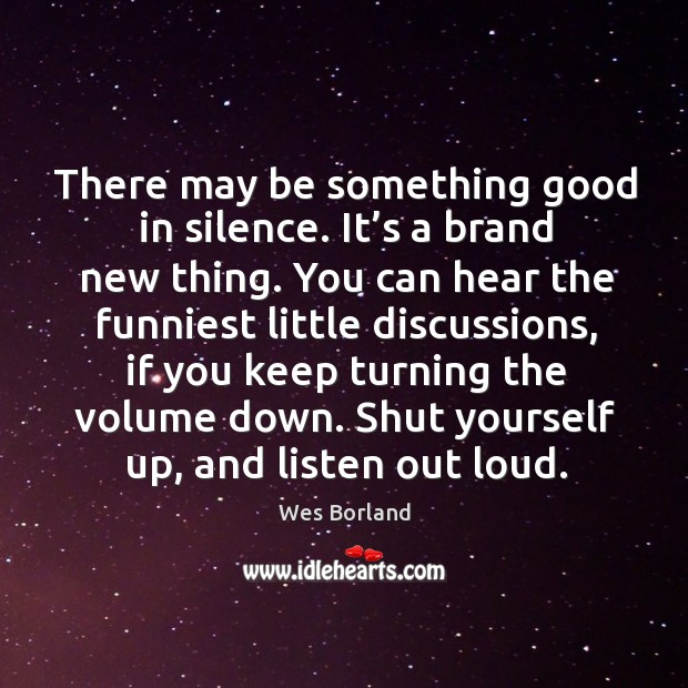 There may be something good in silence. It's a brand new thing. Wes Borland Picture Quote