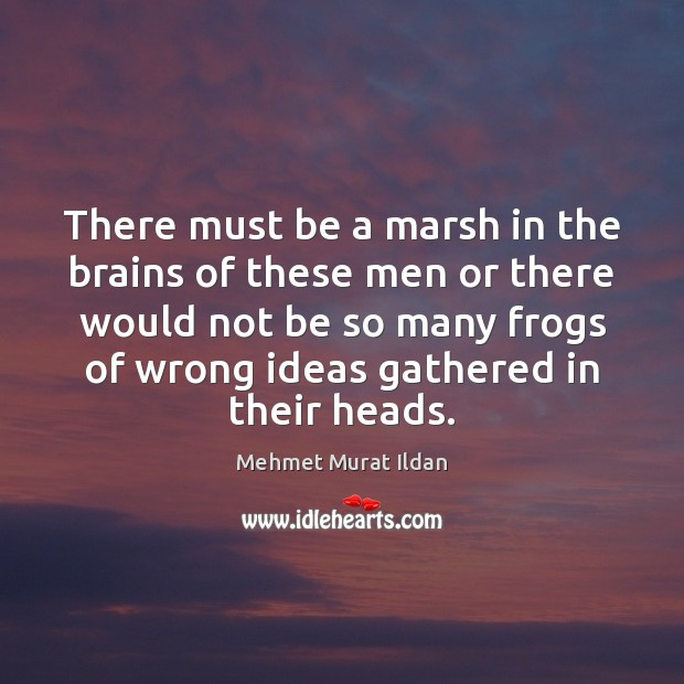 Image about There must be a marsh in the brains of these men or