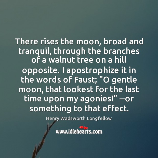 Image, There rises the moon, broad and tranquil, through the branches of a