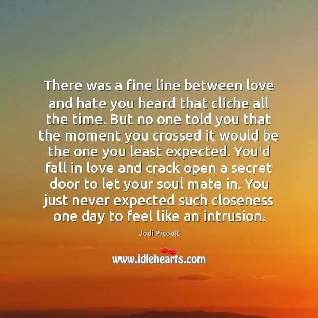There was a fine line between love and hate you heard that Love and Hate Quotes Image