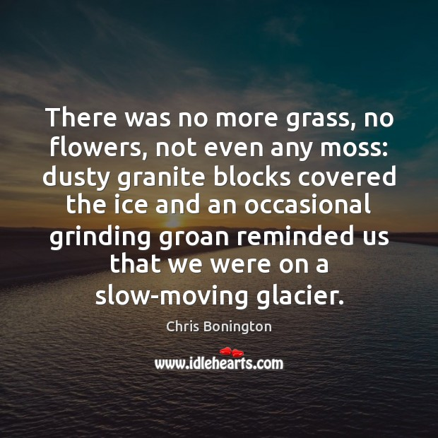 There was no more grass, no flowers, not even any moss: dusty Image