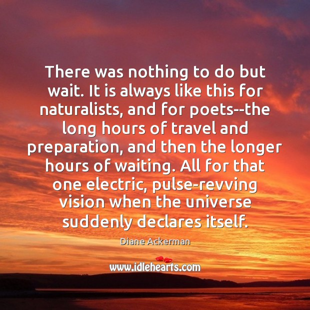 There was nothing to do but wait. It is always like this Diane Ackerman Picture Quote