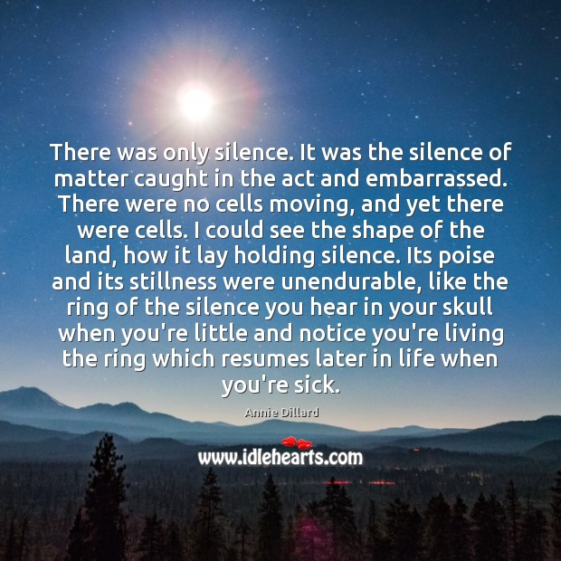 There was only silence. It was the silence of matter caught in Image