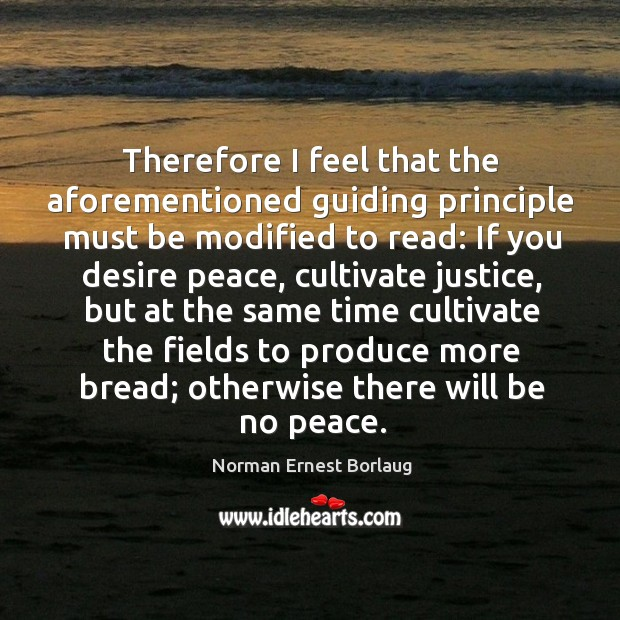 Therefore I feel that the aforementioned guiding principle must be modified to read: Image