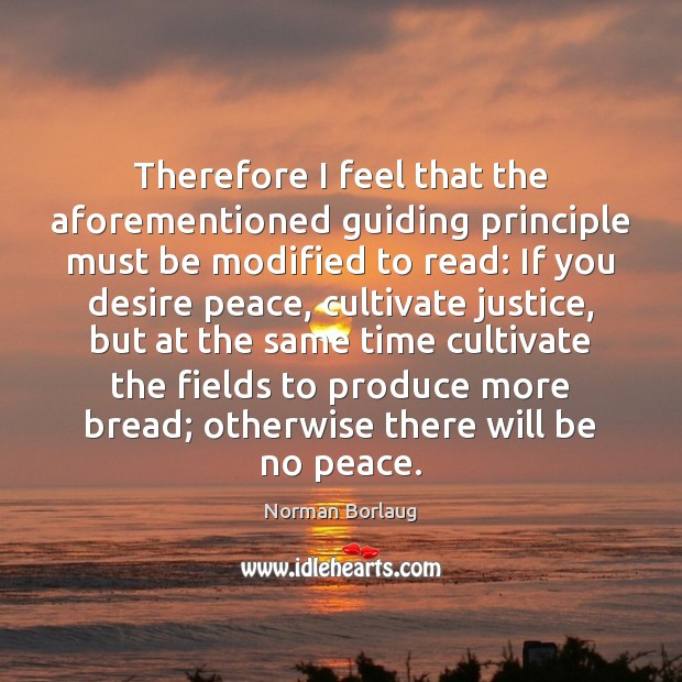 Image, Therefore I feel that the aforementioned guiding principle must be modified to