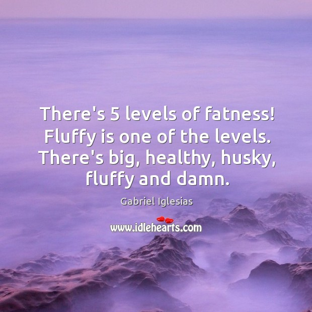 There's 5 levels of fatness! Fluffy is one of the levels. There's big, Image