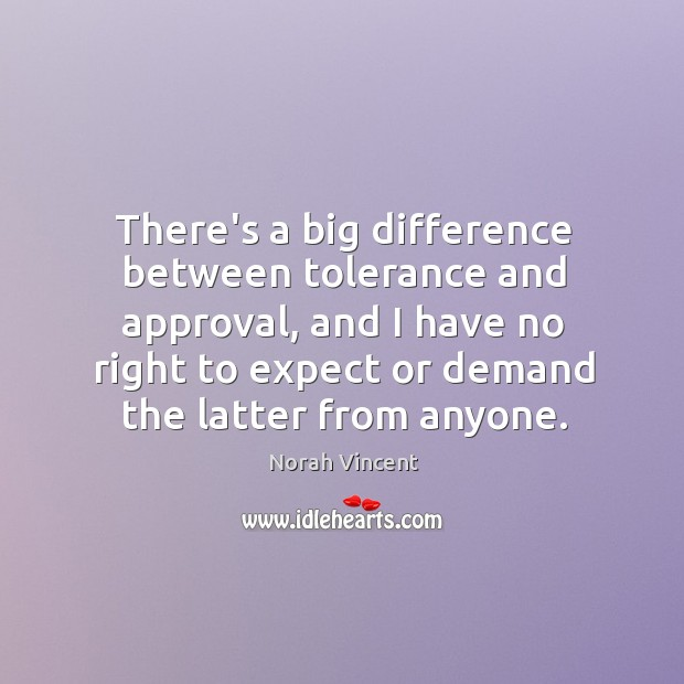 There's a big difference between tolerance and approval, and I have no Norah Vincent Picture Quote