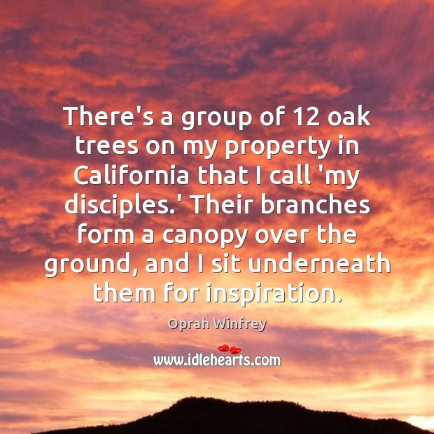 There's a group of 12 oak trees on my property in California that Oprah Winfrey Picture Quote