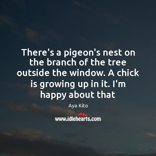 Image, There's a pigeon's nest on the branch of the tree outside the