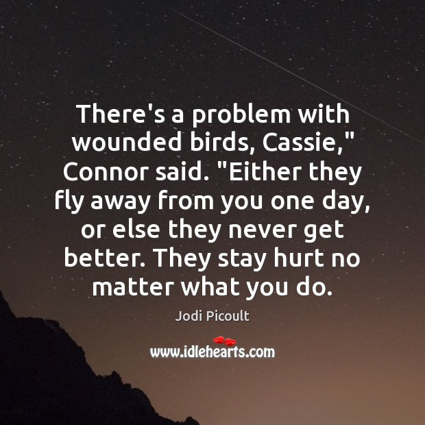 """There's a problem with wounded birds, Cassie,"""" Connor said. """"Either they fly Image"""