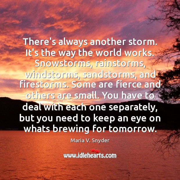 There's always another storm. It's the way the world works. Snowstorms, rainstorms, Maria V. Snyder Picture Quote