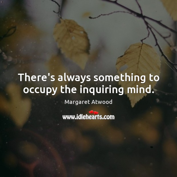 There's always something to occupy the inquiring mind. Image