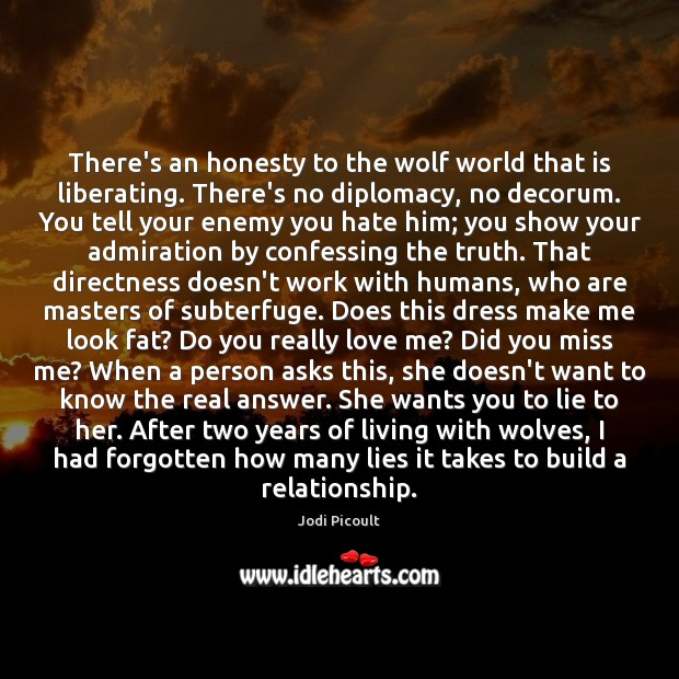 There's an honesty to the wolf world that is liberating. There's no Image