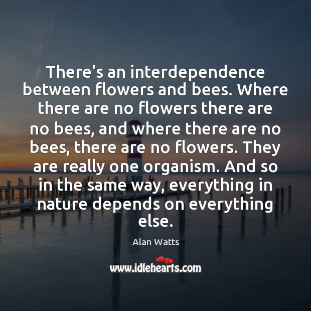 There's an interdependence between flowers and bees. Where there are no flowers Alan Watts Picture Quote