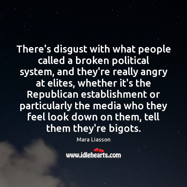 There's disgust with what people called a broken political system, and they're Image