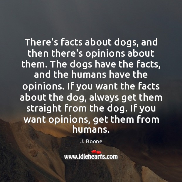 There's facts about dogs, and then there's opinions about them. The dogs Image