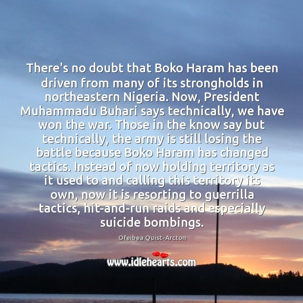 There's no doubt that Boko Haram has been driven from many of Image