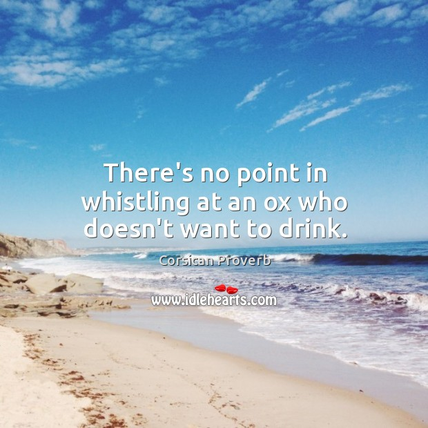 Image, There's no point in whistling at an ox who doesn't want to drink.