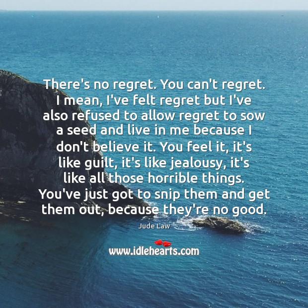 Image, There's no regret. You can't regret. I mean, I've felt regret but