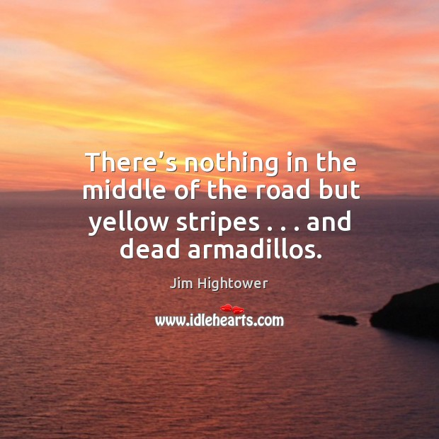 Image, There's nothing in the middle of the road but yellow stripes . . . And dead armadillos.