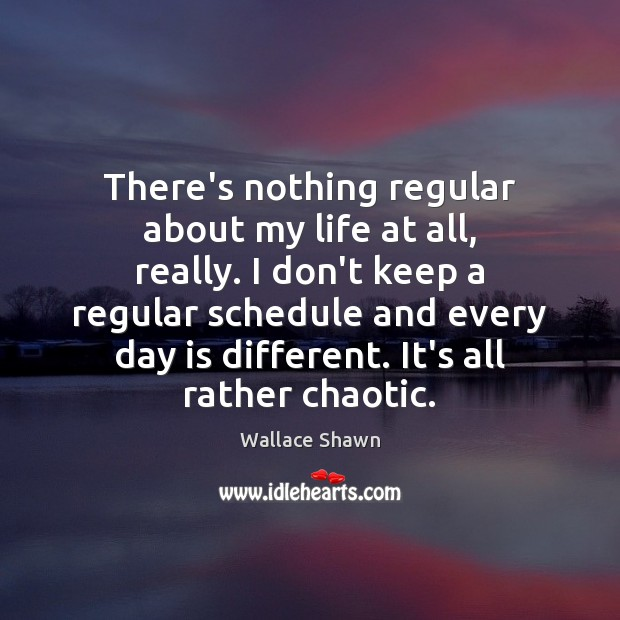 There's nothing regular about my life at all, really. I don't keep Wallace Shawn Picture Quote
