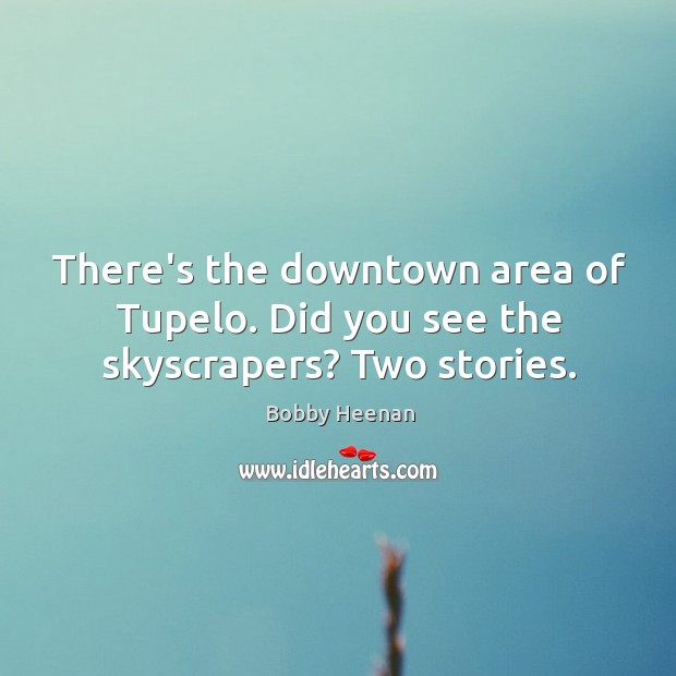 There's the downtown area of Tupelo. Did you see the skyscrapers? Two stories. Image