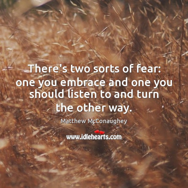 There's two sorts of fear: one you embrace and one you should Matthew McConaughey Picture Quote