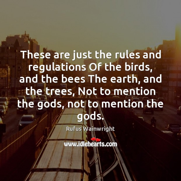 These are just the rules and regulations Of the birds, and the Image