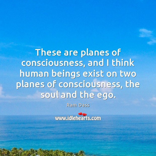 These are planes of consciousness, and I think human beings exist on Ram Dass Picture Quote