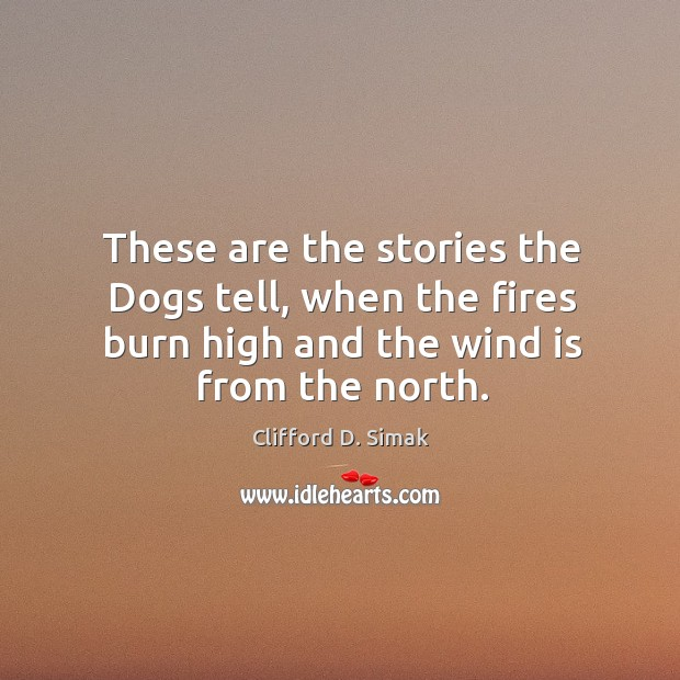 These are the stories the dogs tell, when the fires burn high and the wind is from the north. Image