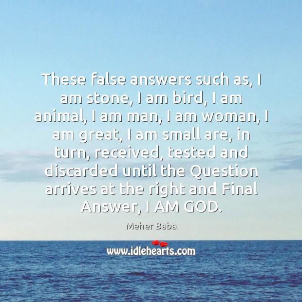 These false answers such as, I am stone, I am bird, I Image