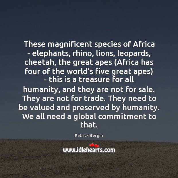 Image, These magnificent species of Africa – elephants, rhino, lions, leopards, cheetah, the