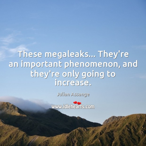 These megaleaks… They're an important phenomenon, and they're only going to increase. Julian Assange Picture Quote