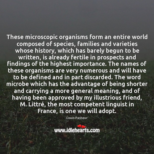These microscopic organisms form an entire world composed of species, families and Louis Pasteur Picture Quote