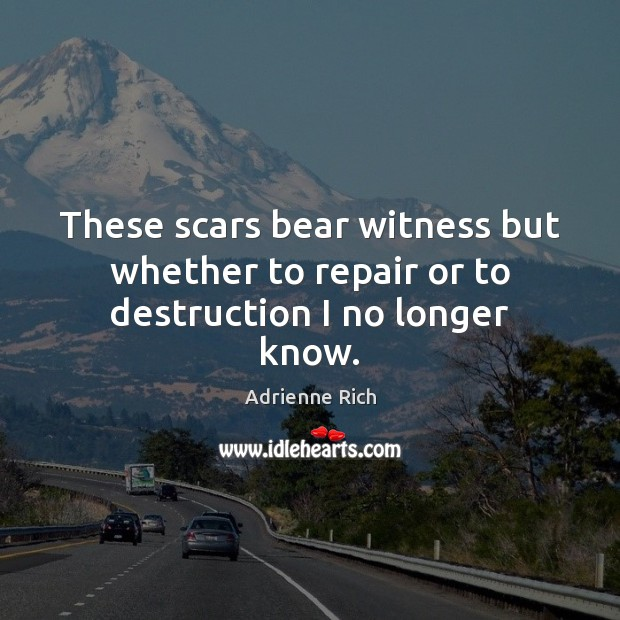 These scars bear witness but whether to repair or to destruction I no longer know. Image