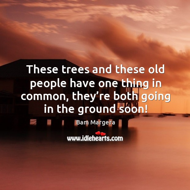 These trees and these old people have one thing in common, they're both going in the ground soon! Image