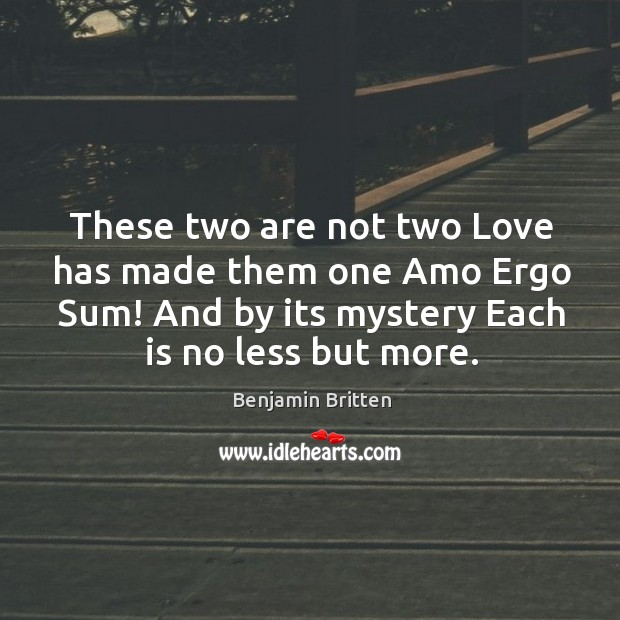 Image, These two are not two love has made them one amo ergo sum!
