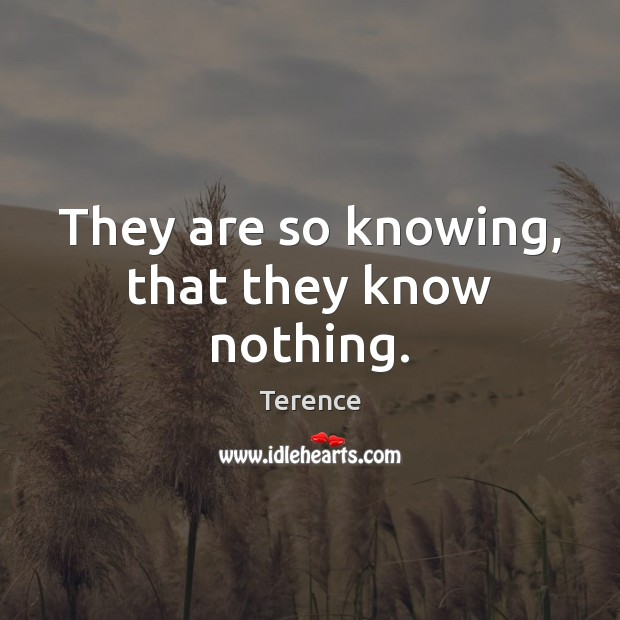 They are so knowing, that they know nothing. Terence Picture Quote