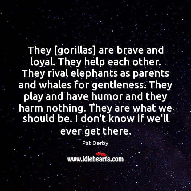 They [gorillas] are brave and loyal. They help each other. They rival Image