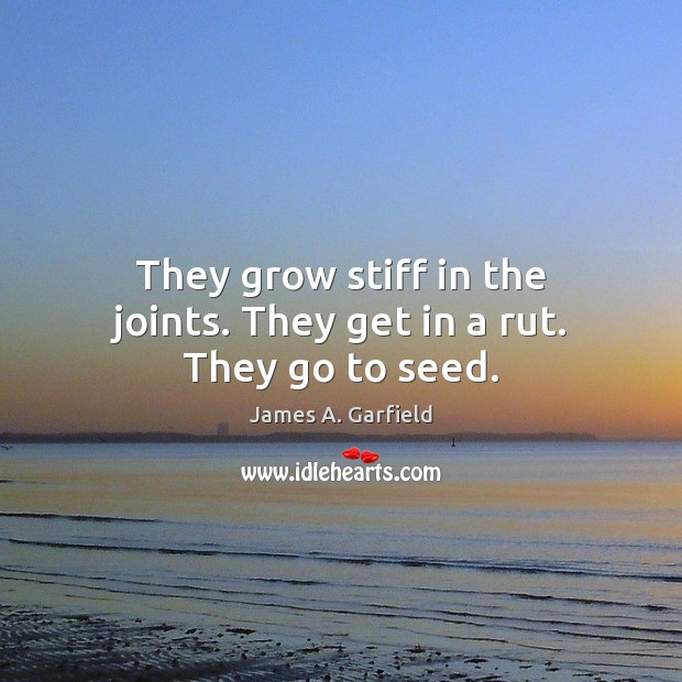 James A. Garfield Picture Quote image saying: They grow stiff in the joints. They get in a rut. They go to seed.