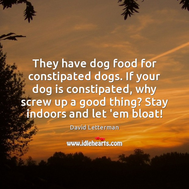 They have dog food for constipated dogs. If your dog is constipated, David Letterman Picture Quote