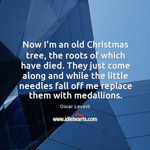 They just come along and while the little needles fall off me replace them with medallions. Image