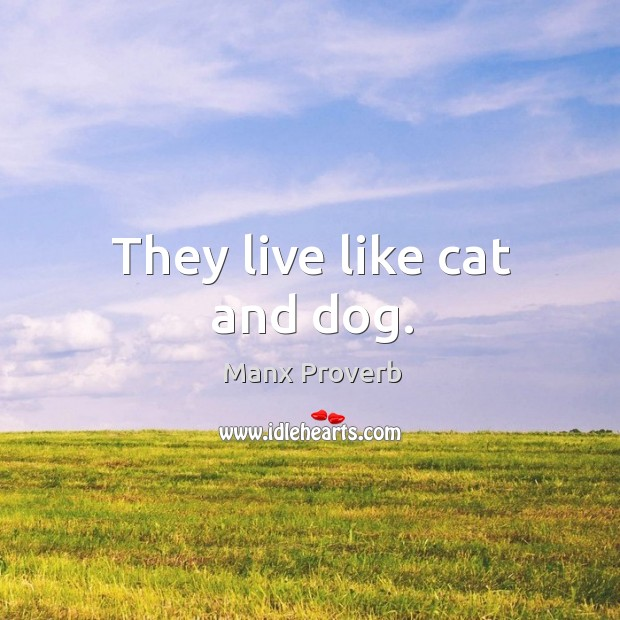 They live like cat and dog. Manx Proverbs Image
