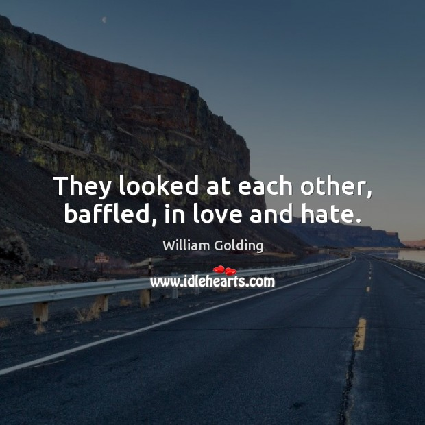 They looked at each other, baffled, in love and hate. Love and Hate Quotes Image