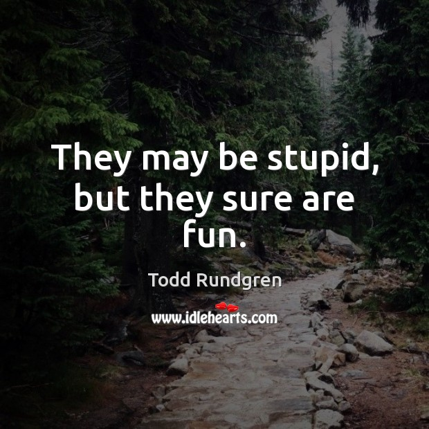 They may be stupid, but they sure are fun. Todd Rundgren Picture Quote