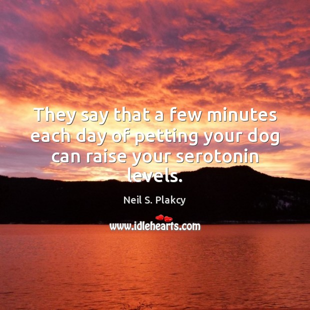Picture Quote by Neil S. Plakcy