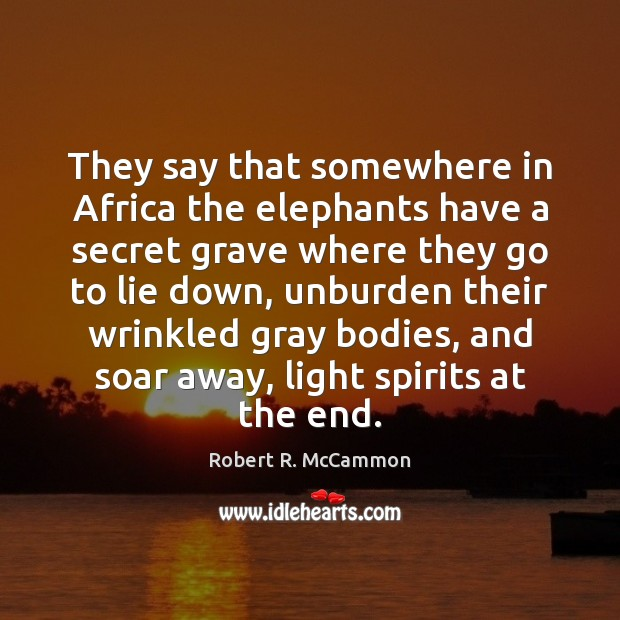 They say that somewhere in Africa the elephants have a secret grave Image