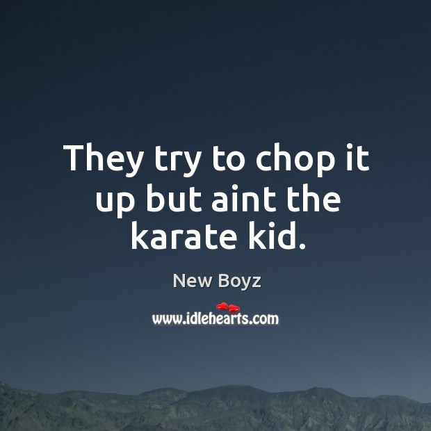 They try to chop it up but aint the karate kid. New Boyz Picture Quote