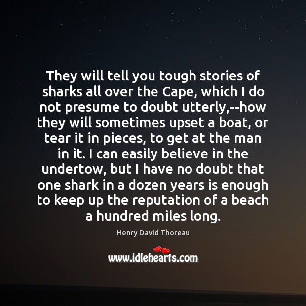 Image, They will tell you tough stories of sharks all over the Cape,