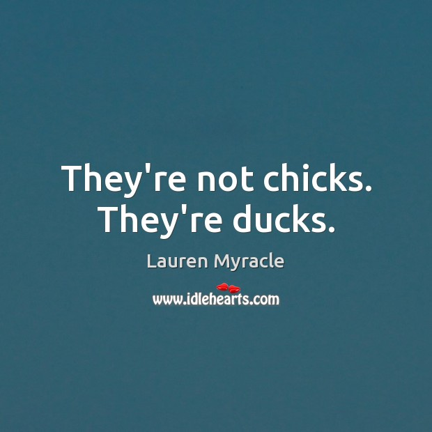 They're not chicks. They're ducks. Lauren Myracle Picture Quote